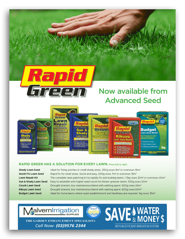 Rapid Green Seed Brochure 1