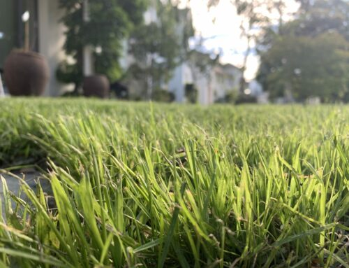 Typical Costs For Irrigation And Garden Products In Melbourne